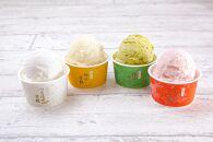 甘糀アイス4種10個セット