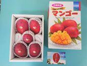 ★沖縄県糸満産 アーウィンマンゴー約2kg
