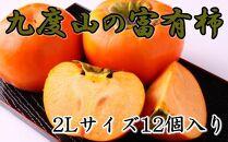 【先行予約】[2021年10月~発送]≪厳選・産直≫九度山町の富有柿2Lサイズ12個入り