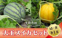 【先行予約】大玉スイカセット