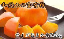 [甘柿の王様]和歌山産富有柿約7.5kgサイズおまかせ[2021年11月~発送]
