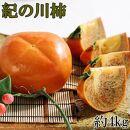 【先行予約】【希少】紀の川柿約4kg(種無し・黒あま柿)秀選品
