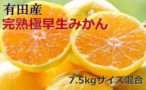 【先行予約】【厳選】紀州有田の完熟極早生みかん約7.5kg(サイズ混合)