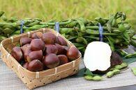 丹波篠山名産 山の芋(400g×2)・黒枝豆(2kg)・丹波栗(1kg)の三品セットB