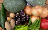 竜王町産季節の野菜詰め合わせセット