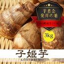 【芋煮会発祥の地中山町産里いも】山形県伝統野菜こひめ芋3kg