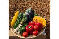 【2022年4月~6月発送】アタタカダイチ野菜セット(フルーツ入り)【野菜8品+フルーツ1品】