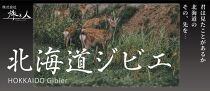 ◆超希少!北海道ヒグマ,エゾシカハム&ソーセージキ等バラエティーパック♪