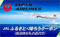 【宜野湾市】JALふるさとへ帰ろうクーポン(13,500円分)×ぎのわんハートプロジェクトハートカード