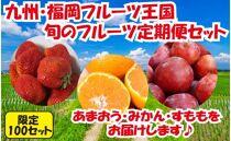 九州・福岡フルーツ王国八女 旬のフルーツ定期便【全3回】B