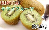 和歌山かつらぎ町産キウイフルーツ約3.6kg(M~3Lサイスおまかせ)秀品【2022年1月中旬~発送】