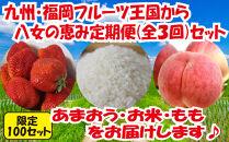 九州・福岡からお届け!八女の恵み定期便【全3回】C