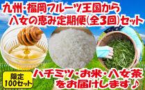 九州・福岡からお届け!八女の恵み定期便【全3回】F