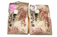 2021年産新米「だて正夢」「ひとめぼれ」無洗米食べ比べセット(精米3kg×各1袋)
