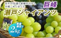 【2021年発送】巨峰・瀬戸ジャイアンツ 計2kg
