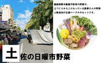 【4回定期便】野菜屋高知のふるさとセット/生姜ベーグルと旬の野菜セット