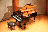 【河口湖畔の音楽ホール】河口湖円形ホールホール1日貸し切りベーゼンドルファーピアノ使用権付き