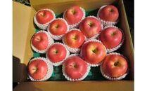 【令和3年度産】サンつがる りんご