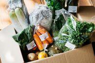 【2020年12月お届け】農家から直送!もりだくさんお野菜セット
