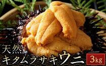 【先行予約】殻付きキタムラサキウニ3kg(2021年6月上旬から発送)