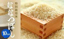 特別栽培米アポイ米(ななつぼし)10kg