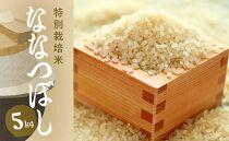 特別栽培米アポイ米(ななつぼし)5kg