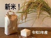 【新米】栃木市岩舟町産ミルキークイーン10kg【玄米】
