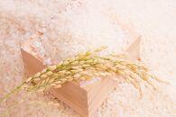 【2021年度産先行受付】中山町産美味しいブランド米!年6回定期便「コシヒカリ」合計60Kg