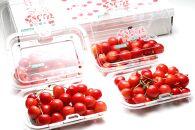 【2021年度産先行受付】人気フルーツ食べ比べ定期便 年4回