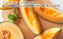 【2021夏発送!絶品!!甘みたっぷり】ようてい赤肉メロン2玉