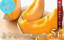 【2021年夏発送!絶品!!甘みたっぷり】ようてい赤肉メロン5玉