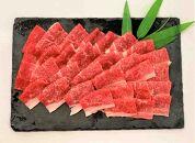 魚と肉のコラボセット(本マグロ中トロ100g、りゅうきゅう3人前、豊後牛焼肉セット2人前240g)