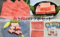 魚と肉のコラボセット(本マグロ中トロ300g、りゅうきゅう5人前、豊後牛肩ロースすきやき3人前900g)