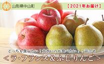 【2021年お届け】☆どっちも食べたい!大きいのが食べたい!!詰合せ<ラ・フランス&ふじりんご>