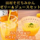 田村そだちみかんゼリー115g×8個&ジュースセット970ml×1本