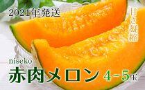 【ニセコ】赤肉メロン4~5玉入り 2021年発送
