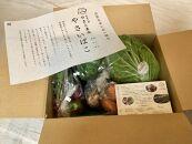 【年4回】楽しい野菜の宝箱「やさいばこ」