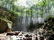 ③青木ケ原樹海の3ケ所の天然洞窟とディープな樹海散策5時間コース【大人3名様分体験チケット】