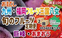 九州・福岡フルーツ王国八女 お試し旬のフルーツ定期便【全2回】D