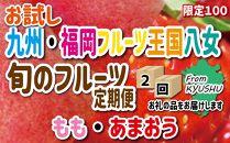 九州・福岡フルーツ王国八女 お試し旬のフルーツ定期便【全2回】E
