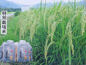 南魚沼産コシヒカリ玄米30kg(有機肥料栽培、8割減農薬米)