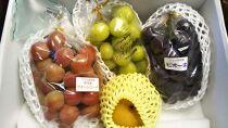 旬の果物とコシヒカリの詰合せ