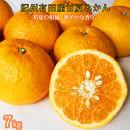 ☆先行予約☆紀州有田産 初夏の柑橘 甘夏みかん 7kg