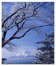 富士山写真大賞額装写真「春の淡雪 御坂峠より」(全紙額装サイズ約530×640mm)
