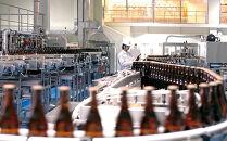 オリオン ザ・ドラフトビール(500ml×24本)*県認定返礼品/オリオンビール*
