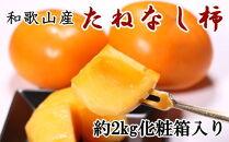 【先行予約】【秋の味覚】和歌山産のたねなし柿3L・4Lサイズ約2kg(化粧箱入り)