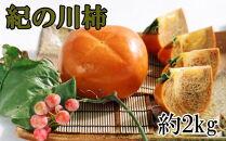 【先行予約・2021年9月中旬~発送】【希少】紀の川柿約2kg(種無し・黒あま柿)秀選品