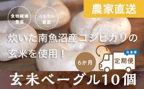 <頒布会>玄米ベーグル10個【冷凍】×6か月栄養豊富・毎朝の習慣に_BR