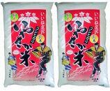 金沢いやさか米コシヒカリ(玄米)5kg×2