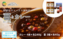 新感覚のスパイス調味料「薑」はじかみ(3個)とカレー(4袋)のセット